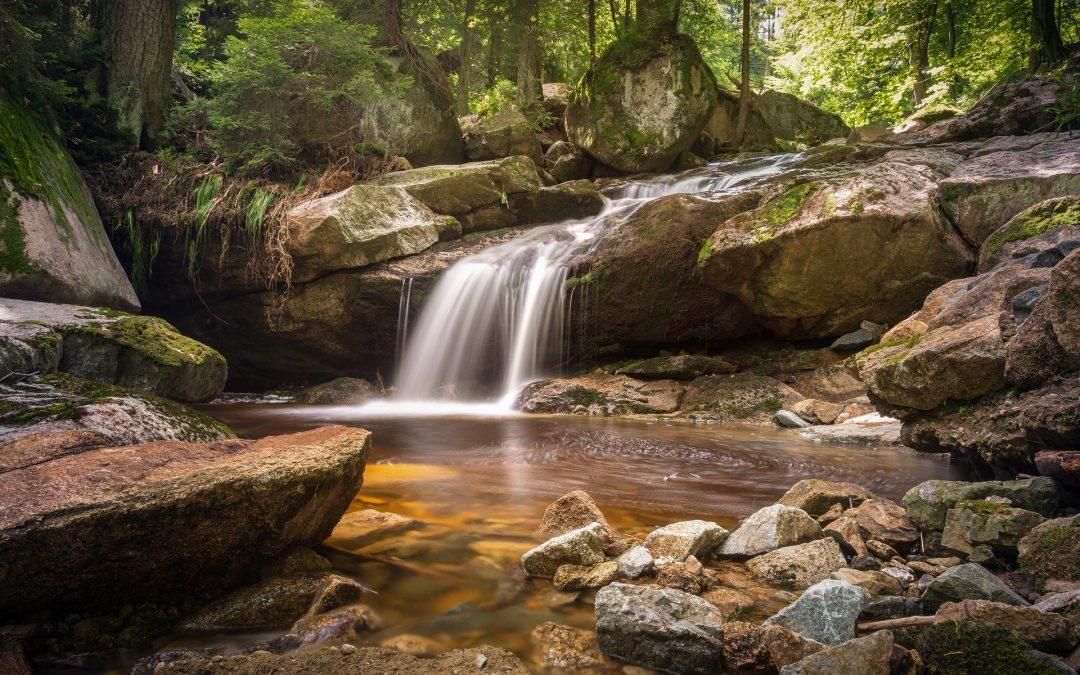 Warum Entgiftung und Reinigung… Was ist mit der Natur passiert?